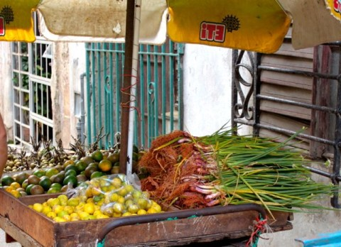 Cuban Fruit Stand