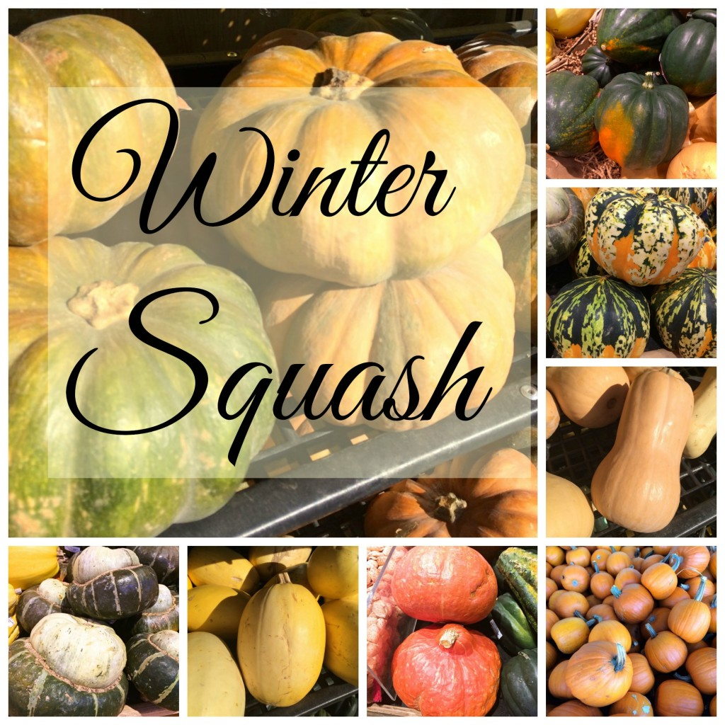 All About Winter Squash - They may look weird, but they're wonderful!