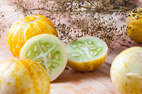 Lemon Cucumbers: 5 Tips for Buying Perfect Cucumbers