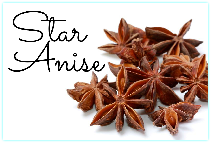 Star Anise-Mama's High Strung