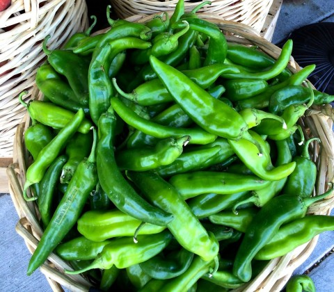 What Are Hatch Chiles?  Mama's High Strung
