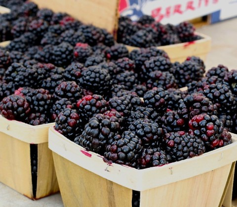 Blackberries-Top 10 Cancer Fighting Foods