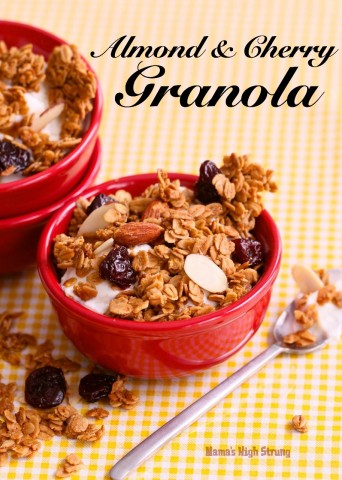 A lot of packaged granola is loaded with sugar and sodium. This one isn't. It's gluten-free and vegan - the best granola ever.